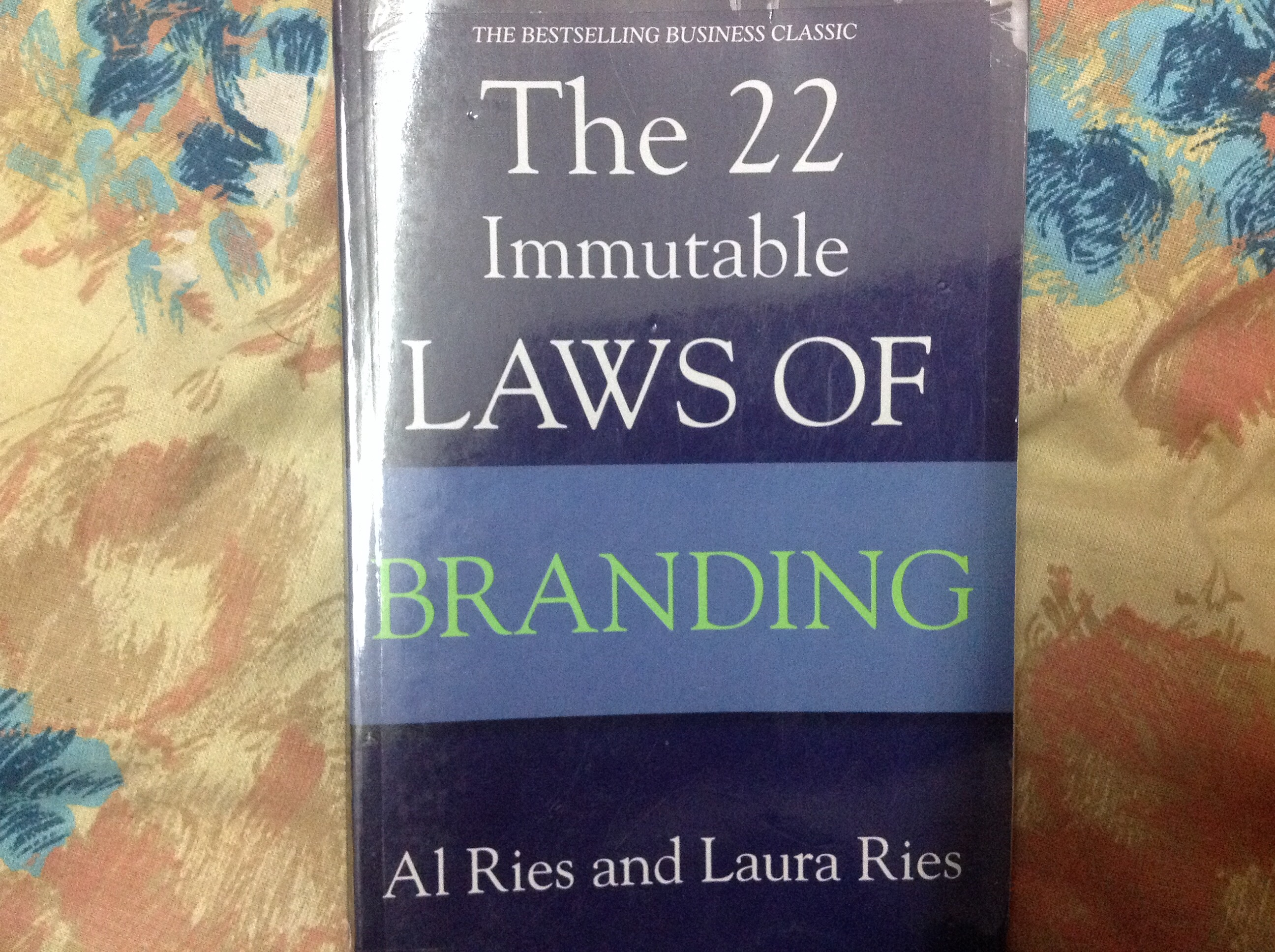 'The 22 Immutable Laws of Branding' by Al Ries and Laura Ries
